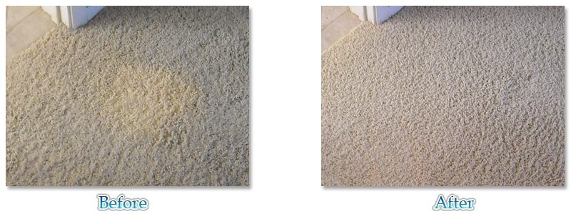 Carpet Cleaning Before And After Commercial Cleaning