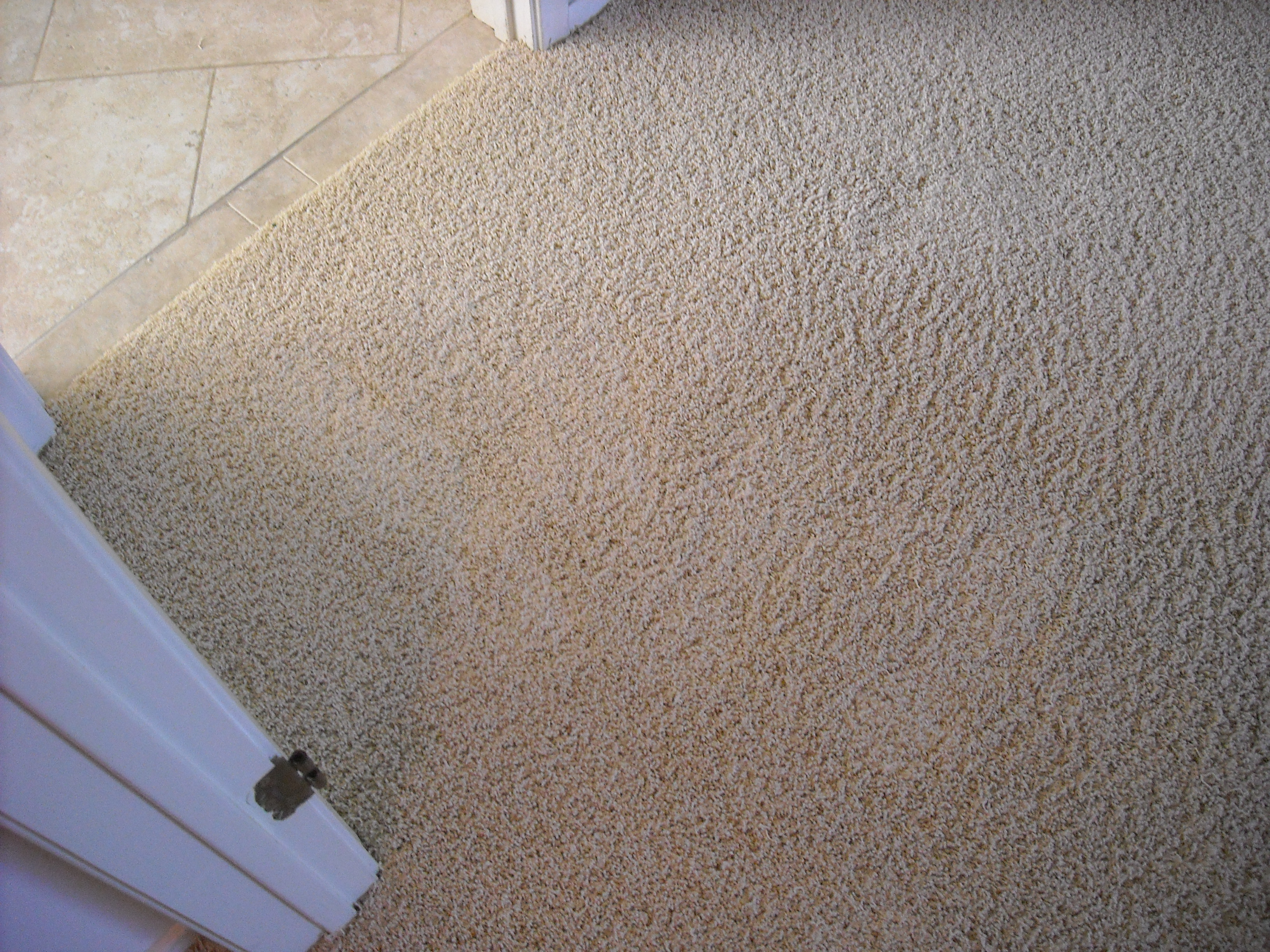Repair Of Bleach Stain 6 Commercial Cleaning Amp Restoration