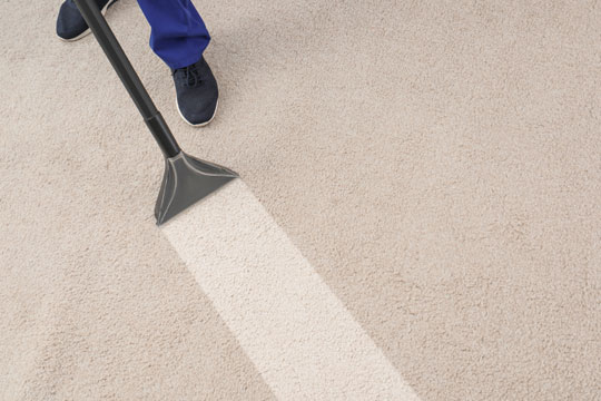 Commercial Cleaning & Restoration | Carpet cleaning to prevent allergies